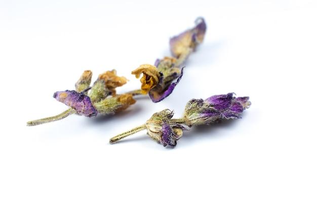 흰색 바탕에 차나 치료를 위한 마른 허브 꽃. 사진을 닫습니다.