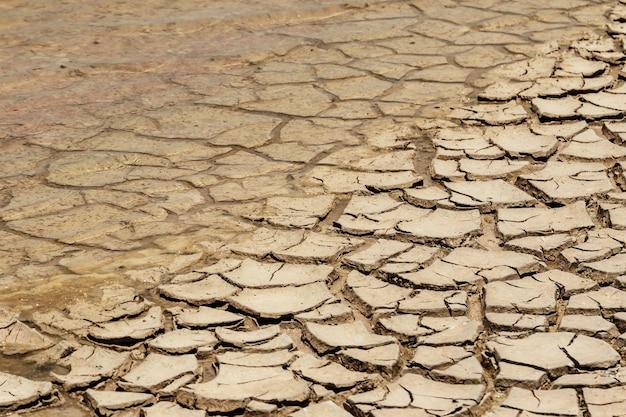 乾燥した湖のベッド。干ばつ地。気候変動と地球温暖化の概念。