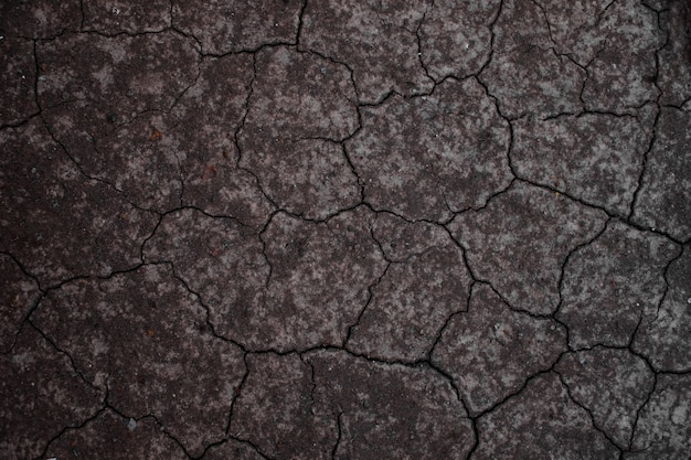 Dry land or dry soil. cracked ground background.