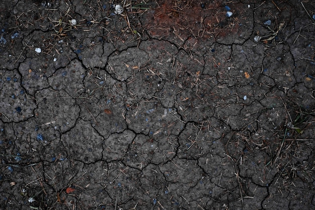 Dry land or dry soil. cracked ground background