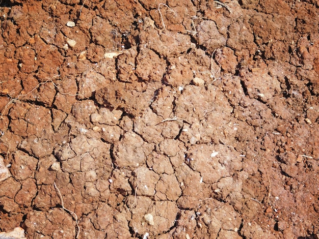 Dry land texture