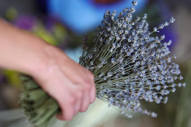 여자 손 프로방스 스타일 개념의 꽃다발에 마른 라벤더