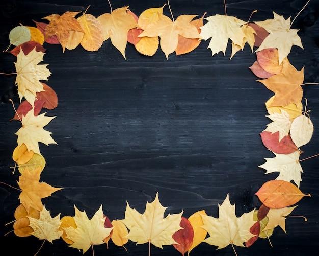 검은 나무에 마른 잎