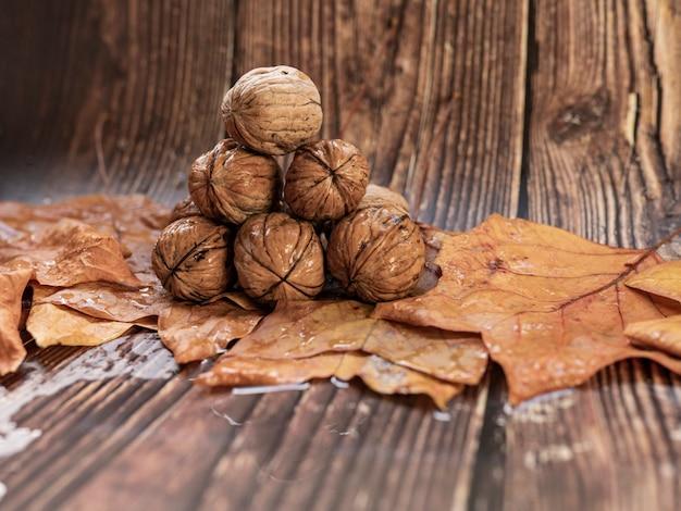 Осенняя концепция сухих листьев орехов