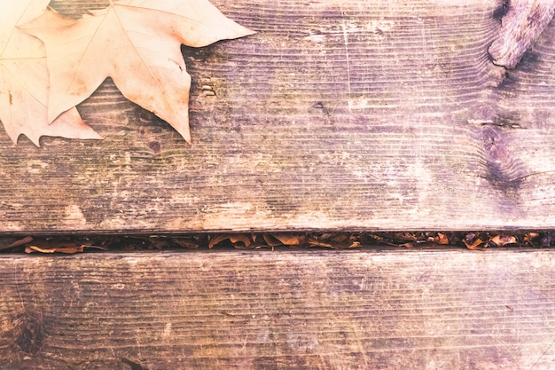 Dry leaves on old wooden board with muted tones.