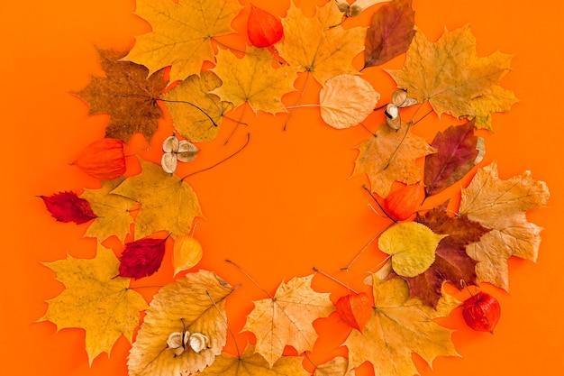 大胆なオレンジ色の背景に乾燥した葉の花輪フレーム