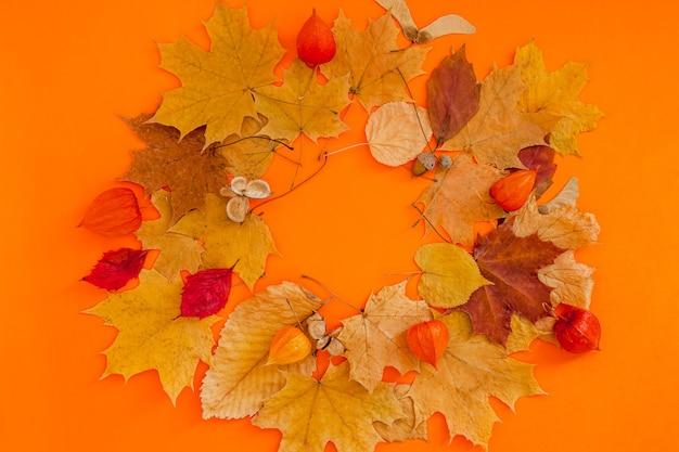 Dry leaves wreath frame on orange color background