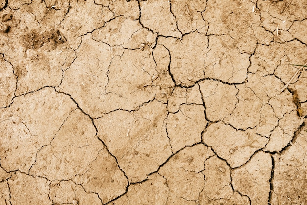Dry mud background texture