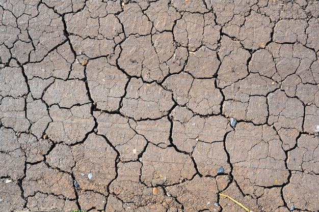 Dry mud cracked ground texture. drought season background. dry and cracked land, dry due to lack of rain. effects of climate change such as desertification and droughts.