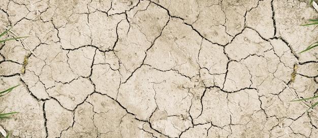乾いた泥の砂漠