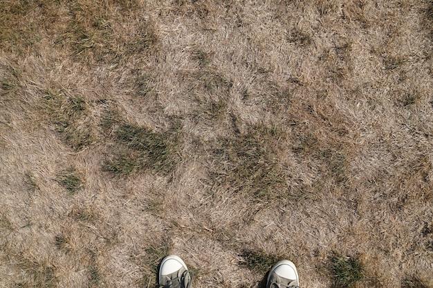 낮 동안 들판에서 마른 진흙 땅
