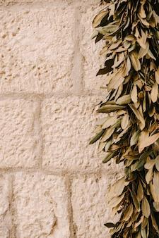 돌 배경에 건조 올리브 잎 화환에 묶인 돌 올리브 잎의 질감