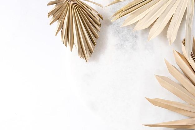 흰색 배경에 마른 야자수 잎평면 평면도 복사 공간