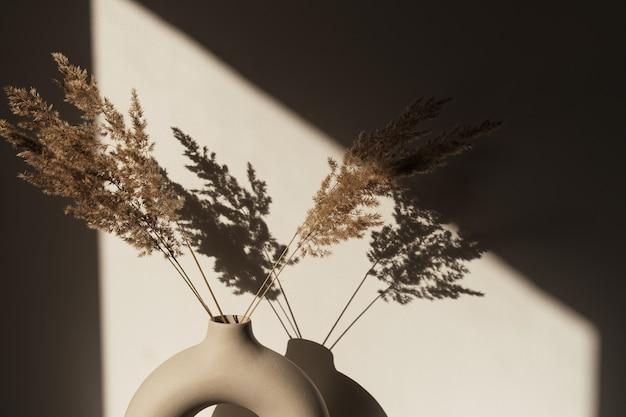 세련된 꽃병에 마른 팜파스 풀 리드. 벽에 그림자. 태양 빛의 실루엣