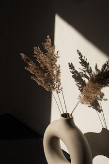 Букет из сухих пампасных трав, стеблей тростника в стильной круглой вазе. тени на стене. силуэт в солнечном свете