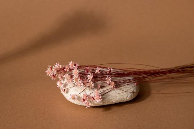 밝은 갈색 배경에 어두운 그림자와 분홍색 꽃과 돌을 건조. 추세, 최소한의 개념 측면보기