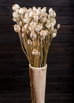 Dry poppy on a dark wooden background. bouquet.