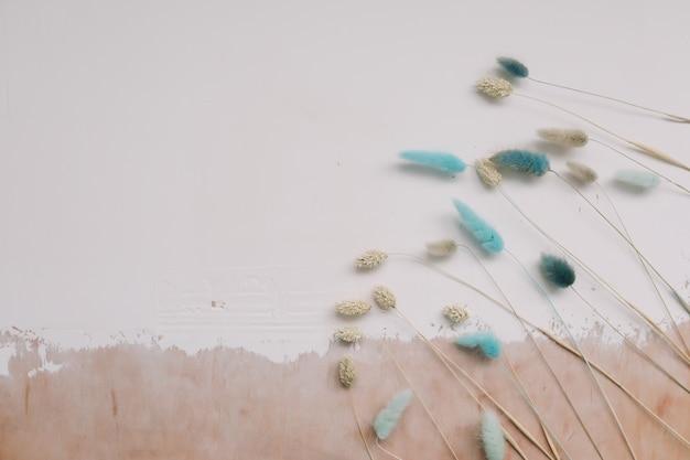 白い織り目加工の背景に乾燥したウサギの尾の花