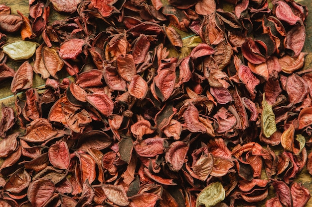 Dry red petals for wallpaper