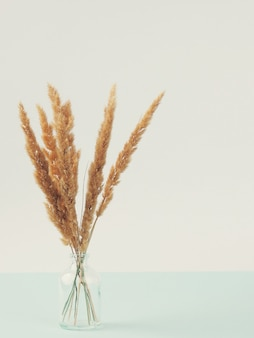 Dry reed in modern vase on the wooden table with copy space. bouquet of dried flowers from ears.