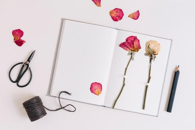 Сухие розы застряли на белой странице ноутбука с ножницами; катушка и карандаш на черном фоне