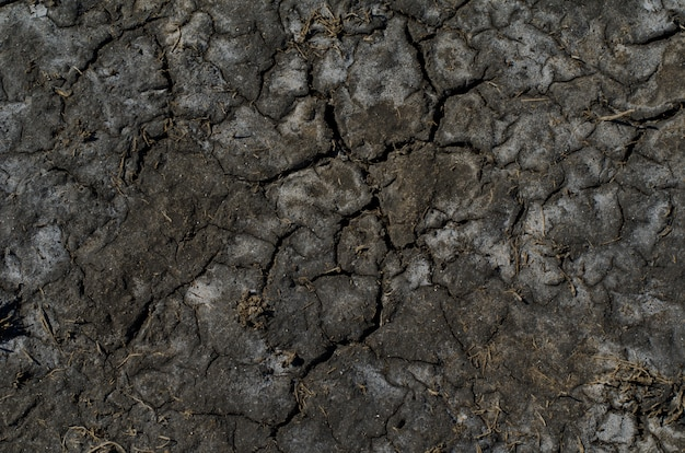 Dry saline soil surface with salt stains