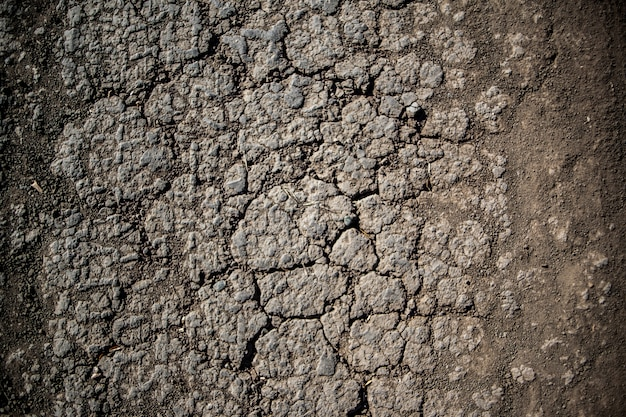 Dry soil arid,drought land.cracks on the ground from lack of water