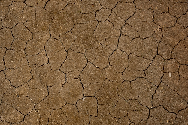 Dry soil background with crack texture