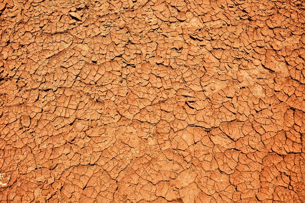 Dry soil texture, global warming concept