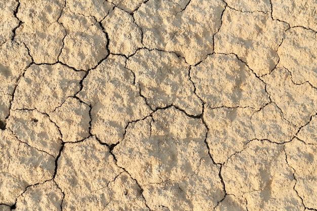 Сухая поверхность земли.