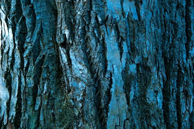 乾燥した木の樹皮のテクスチャー