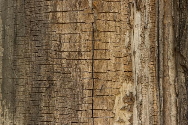 Сухая древесина треснула фон. текстура старого дерева.