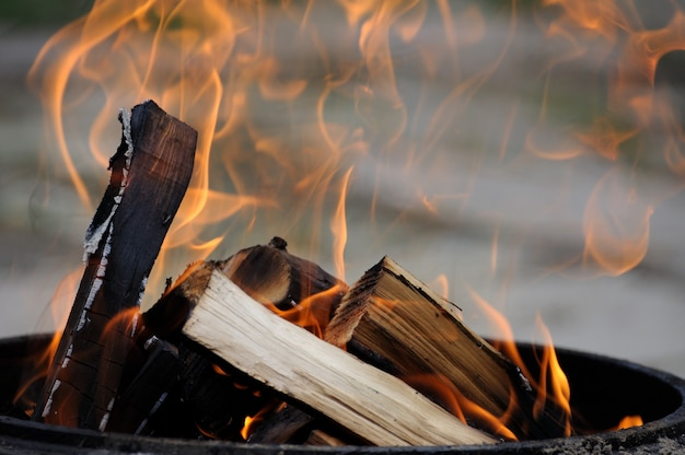 明るく燃える乾燥木材。