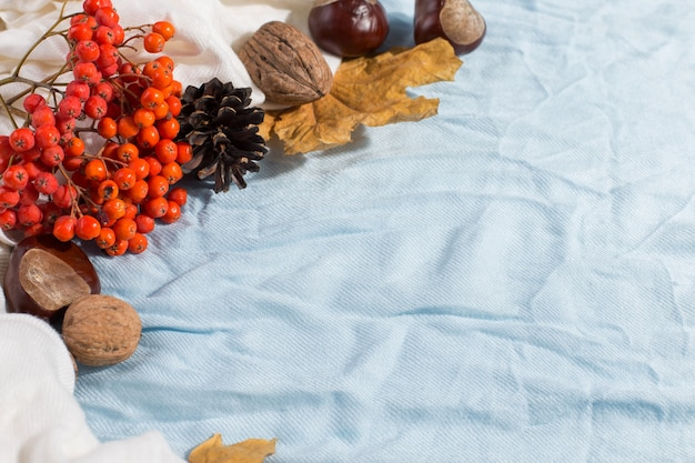 Dry yellow leaves, a scarf, chestnuts and cones on the table. autumn mood, copyspace, morning light.