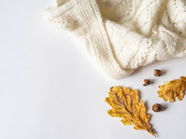 Dry yellow oak leaves and acorns and  warm knitted light plaid. autumn composition on a white background