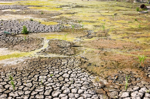 Drying dirty wasteland with cracked surface due to global warming