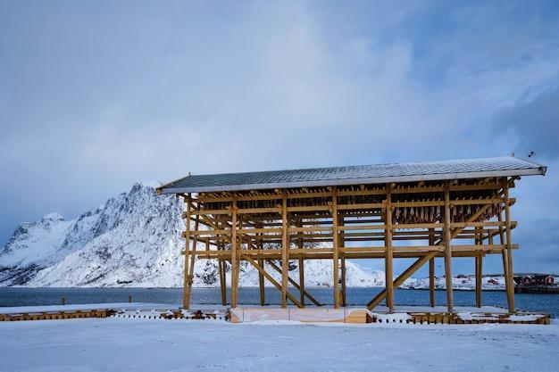 겨울철 건어물 대구 건조 조각 lofoten islands 노르웨이