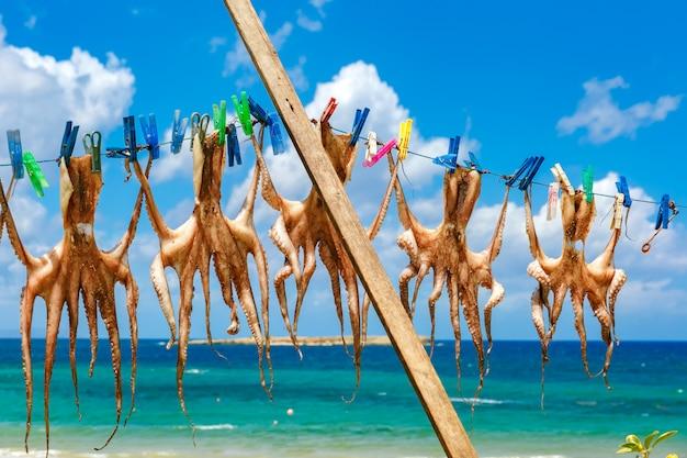 ハニア、クレタ島、ギリシャでタコを乾燥