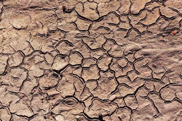 Drylands in the desert