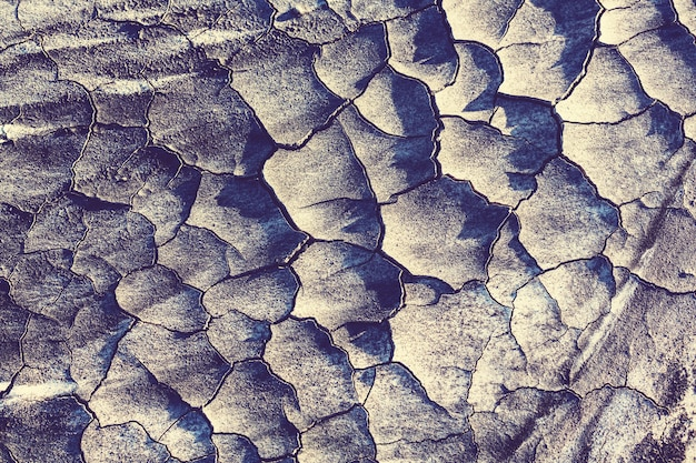 砂漠の乾燥地