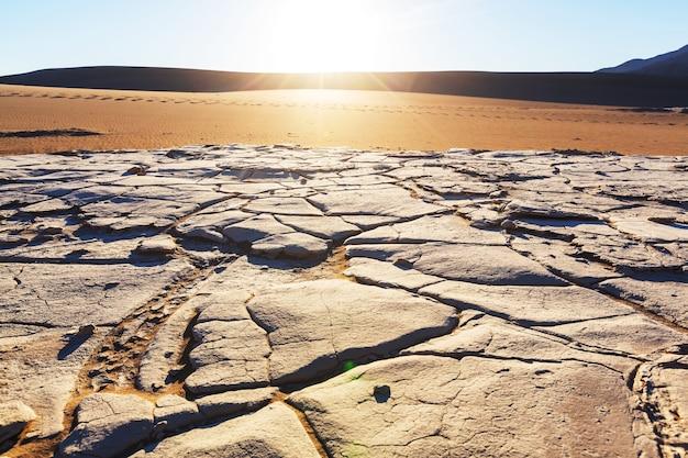사막의 건조지대