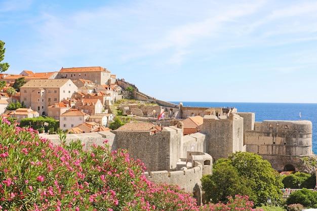 Стены старого города дубровника с цветами, хорватия, европа