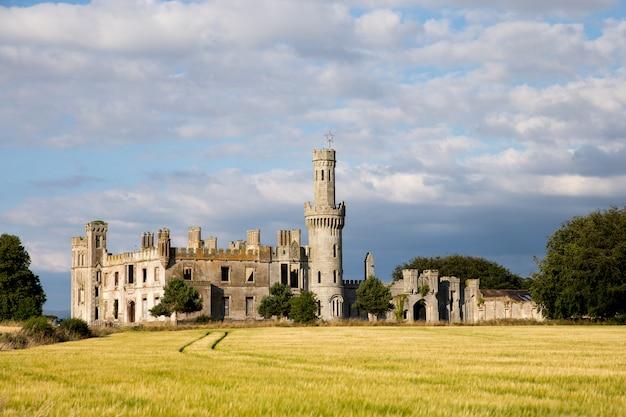 Руины рощи дакетс. руины старого замка в графстве карлоу. туристическая достопримечательность. ирландия