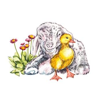 アヒルの子とヤギの水彩イラスト