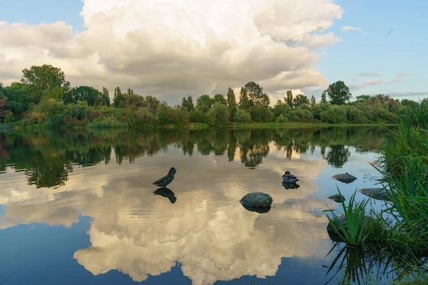 Le anatre nuotano nel lago con riflessi di nuvole nell'acqua