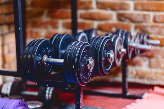Dumbbells and weights on shelves