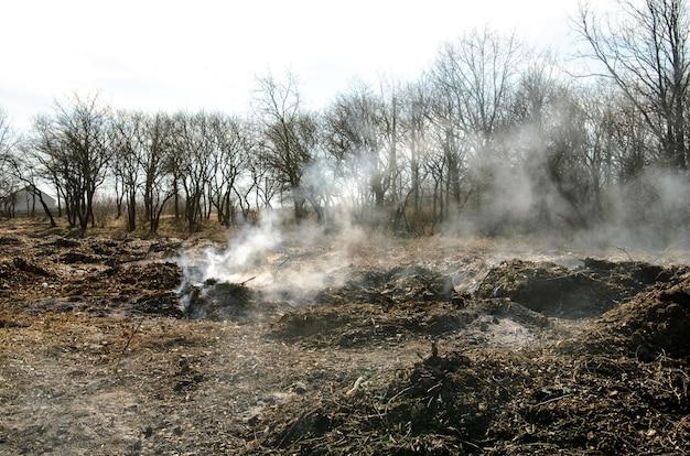 Дамп. загрязнение окружающей среды.