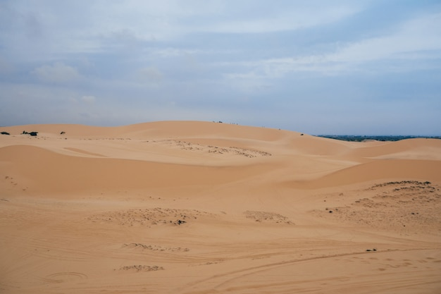 Dunes on a cloudy day