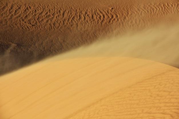 アフリカの中心部にあるサハラ砂漠の砂丘