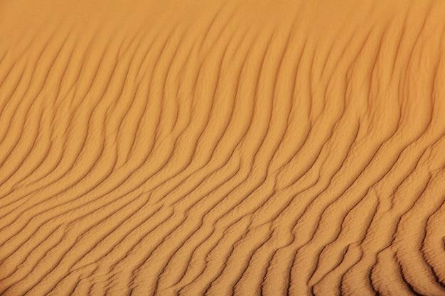 ティミムンの砂丘は、アルジェリアのサハラ砂漠の都市を放棄